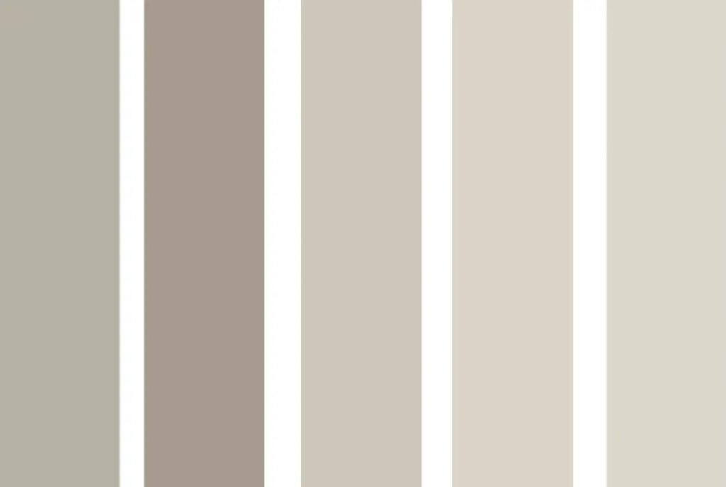 Paleta de tonalidades de gris paloma